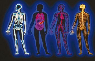 Pathophysiology. pathophysiology and etiology