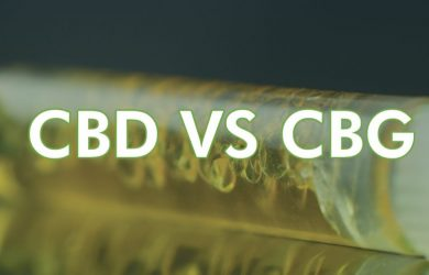 CBD and CBG - Side by Side Comparison & Review